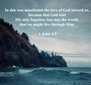 In this was manifested the love of God toward us,  because that God sent  His only begotten Son into the world,  that we might live through Him.   1 John 4:9