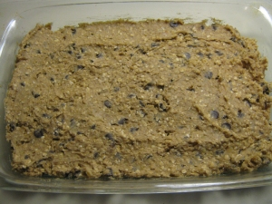 Chocolate Chip Oatmeal Walnut Bars recipe by marissabaker.wordpress.com