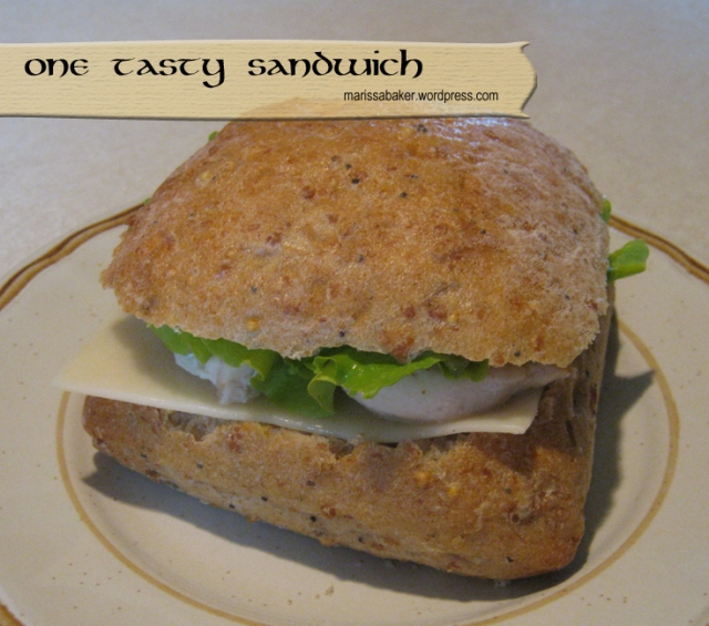 One Tasty Sandwich and A Tale of House-sitting marissabaker.wordpress.com