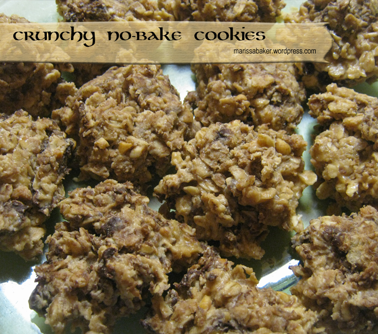 Crunchy No-Bake Cookies | marissabaker.wordpress.com