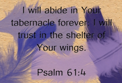 Under His Wings | marissabaker.wordpress.com