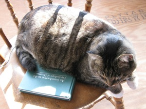 Tiger also appreciates psychology literature on dreaming. He's a well-read cat.