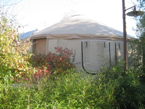 yurt, a.k.a. one of the cutest structures known to man