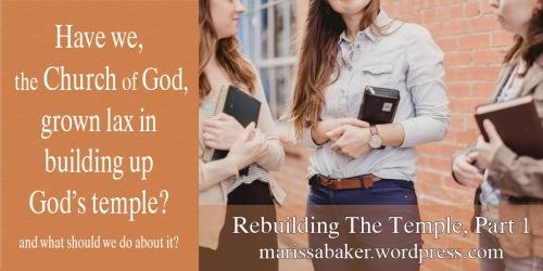 Consider Our Temples | marissabaker.wordpress.com
