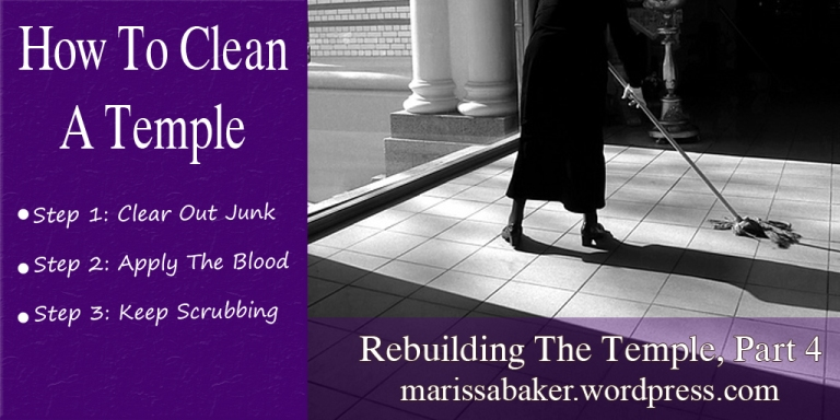 How To Clean A Temple| marissabaker.wordpress.com