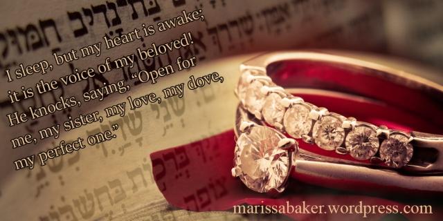 Unveiled | marissabaker.wordpress.com