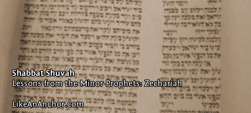 Shabbat Shuvah (Lessons from Zechariah)