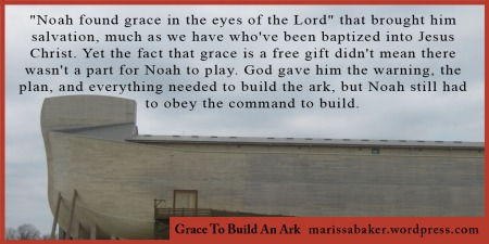 "click to read article, ""Grace To Build An Ark"" 
