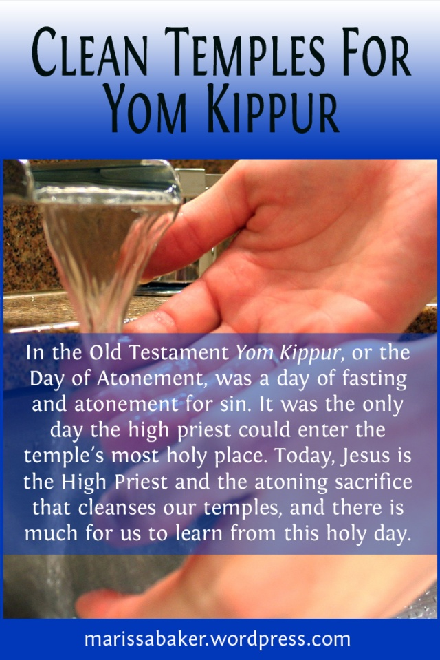 Clean Temples For Yom Kippur | marissabaker.wordpress.com
