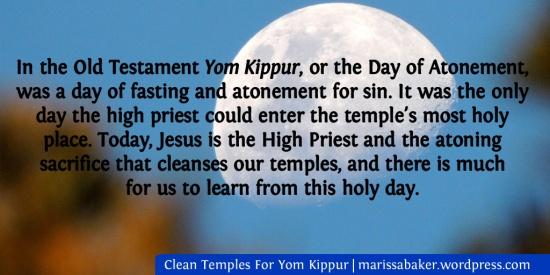 Clean Temples For Yom Kippur | marissabaker.wordpress.com