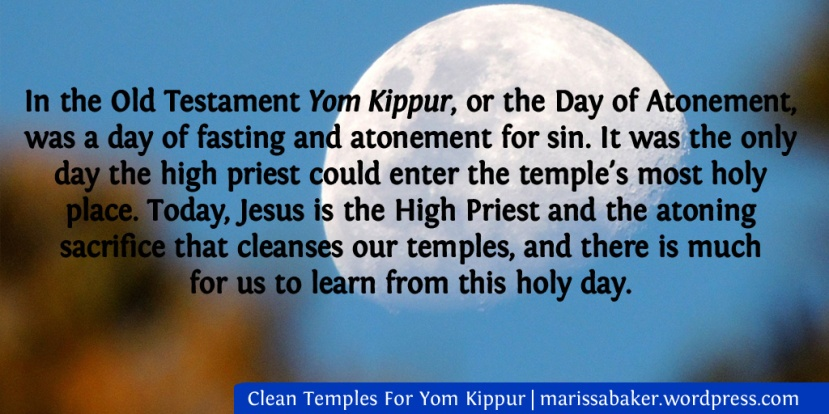 Clean Temples For Yom Kippur