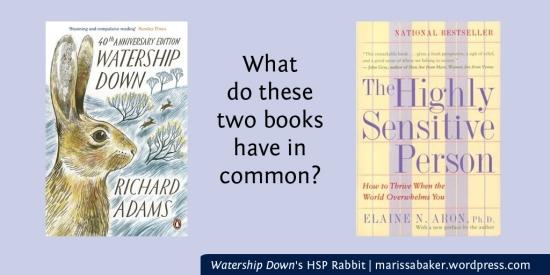 Watership Down's HSP Rabbit | marissabaker.wordpress.com