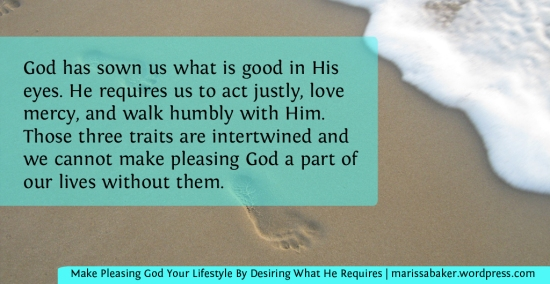 Make Pleasing God Your Lifestyle By Desiring What He Requires | marissabaker.wordpress.com
