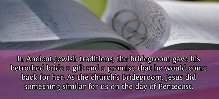 The Bridegroom's Pledge