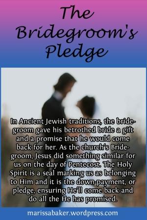 The Bridegroom's Pledge | marissabaker.wordpress.com