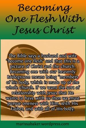Becoming One Flesh With Jesus Christ | marissabaker.wordpress.com