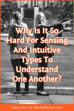 Why Is It So Hard For Sensing And Intuitive Types To Understand One Another? | LikeAnAnchor.com