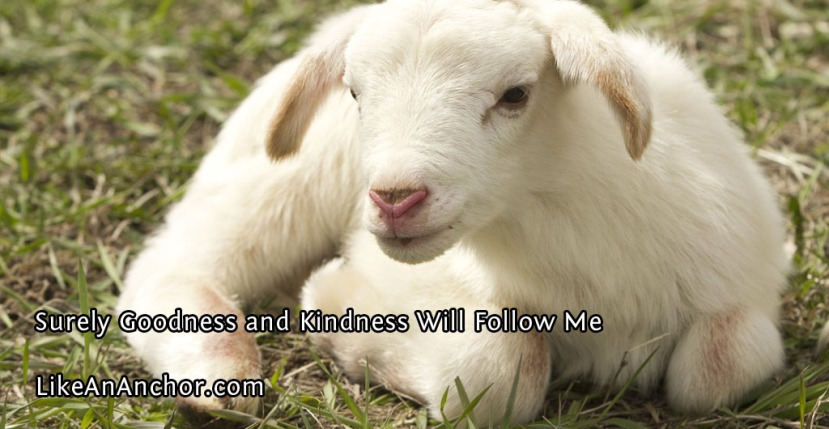 Surely Goodness and Kindness Will Follow Me