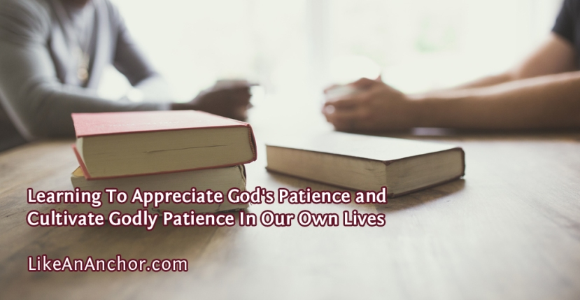 Learning To Appreciate God's Patience and Cultivate Godly Patience In Our Own Lives