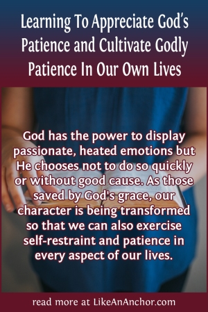 Learning ToAppreciate God's Patience and Cultivate Godly Patience In Our Own Lives | LikeAnAnchor.com