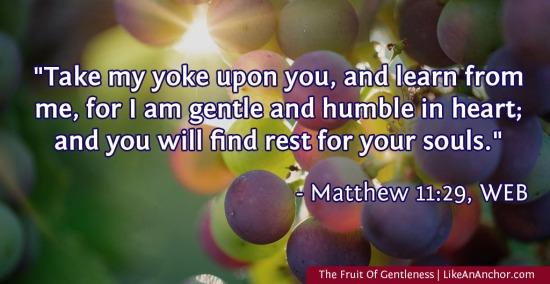 The Fruit Of Gentleness | LikeAnAnchor.com
