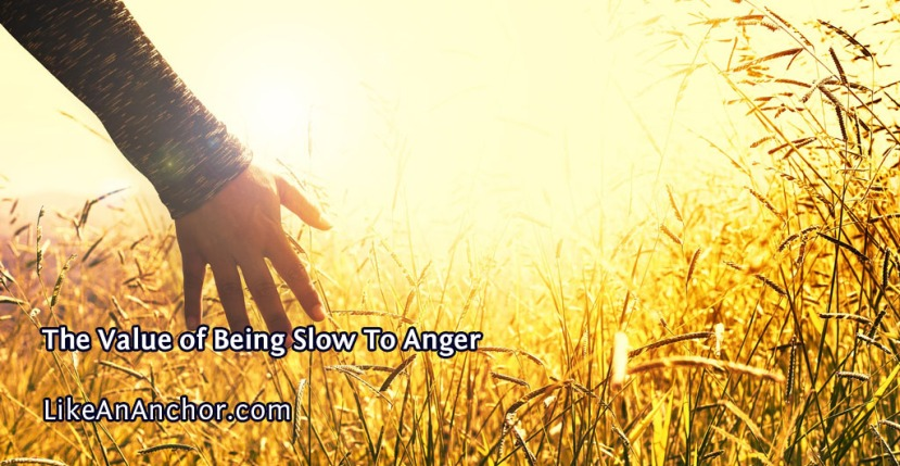 The Value of Being Slow To Anger