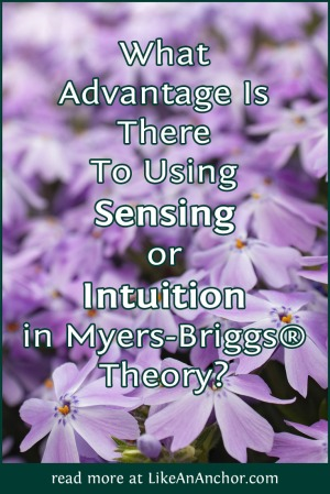 What Advantage Is There To Using Sensing Or Intuition In Myers-Briggs® Theory? | LikeAnAnchor.com