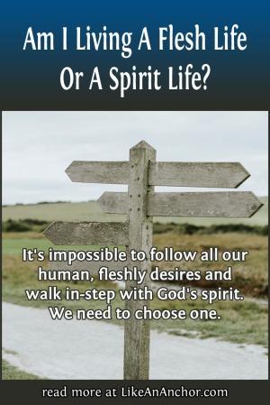 Am I Living A Flesh Life Or A Spirit Life? | LikeAnAnchor.com