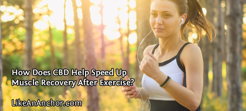 How Does CBD Help Speed Up Muscle Recovery After Exercise?