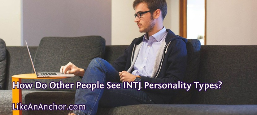 How Do Other People See INTJ Personality Types?