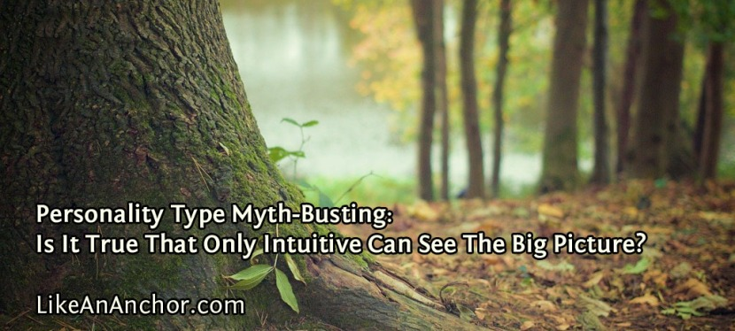 Personality Type Myth-Busting: Is It True That Only Intuitive Can See The BigPicture?