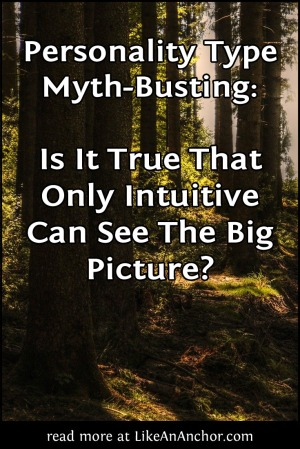 Personality Type Myth-Busting: Is It True That Only Intuitive Can See The Big Picture? | LikeAnAnchor.com