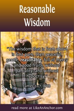 Reasonable Wisdom | LikeAnAnchor.com
