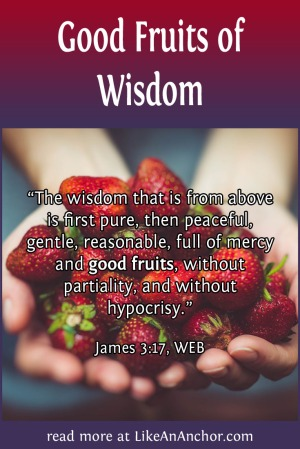 Good Fruits of Wisdom | LikeAnAnchor.com