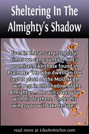 Sheltering In The Almighty's Shadow | LikeAnAnchor.com