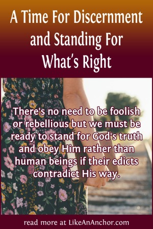A Time For Discernment and Standing For What's Right | LikeAnAnchor.com