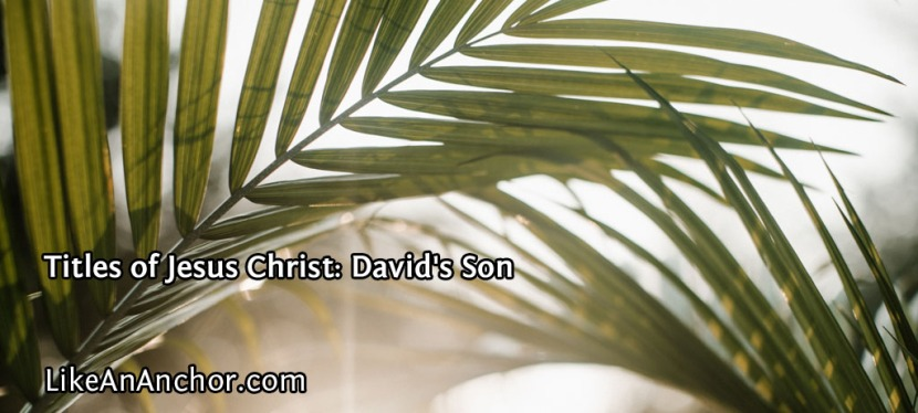 Titles of Jesus Christ: David'sSon