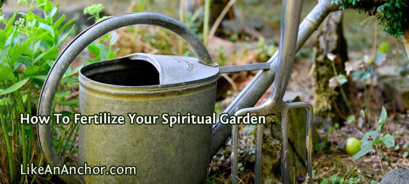How To Fertilize Your Spiritual Garden
