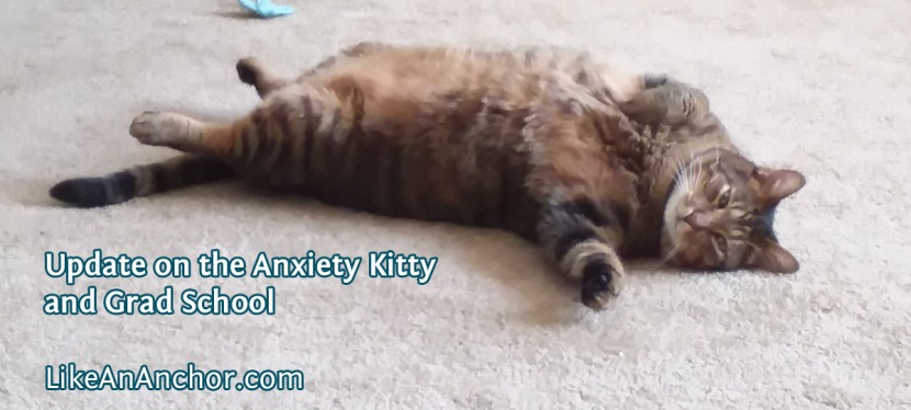 Update on the Anxiety Kitty and Grad School