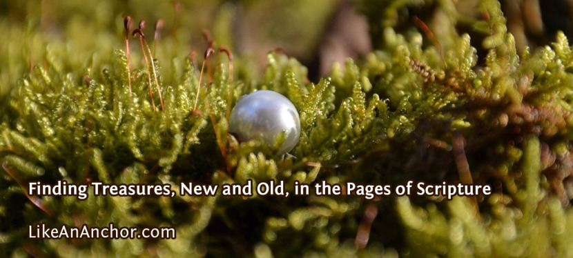 Finding Treasures, New and Old, in the Pages of Scripture
