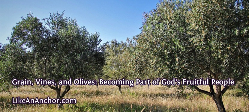 Grain, Vines, and Olives: Becoming Part of God's FruitfulPeople